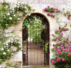 Garden-Gate-CHT01307